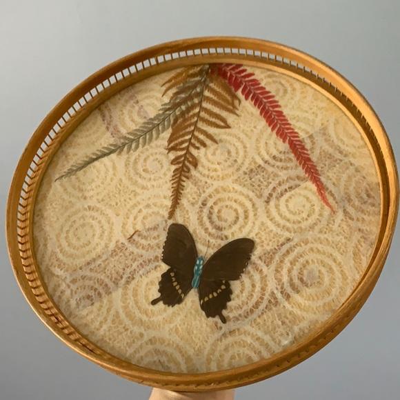 Butterfly tray 🦋
